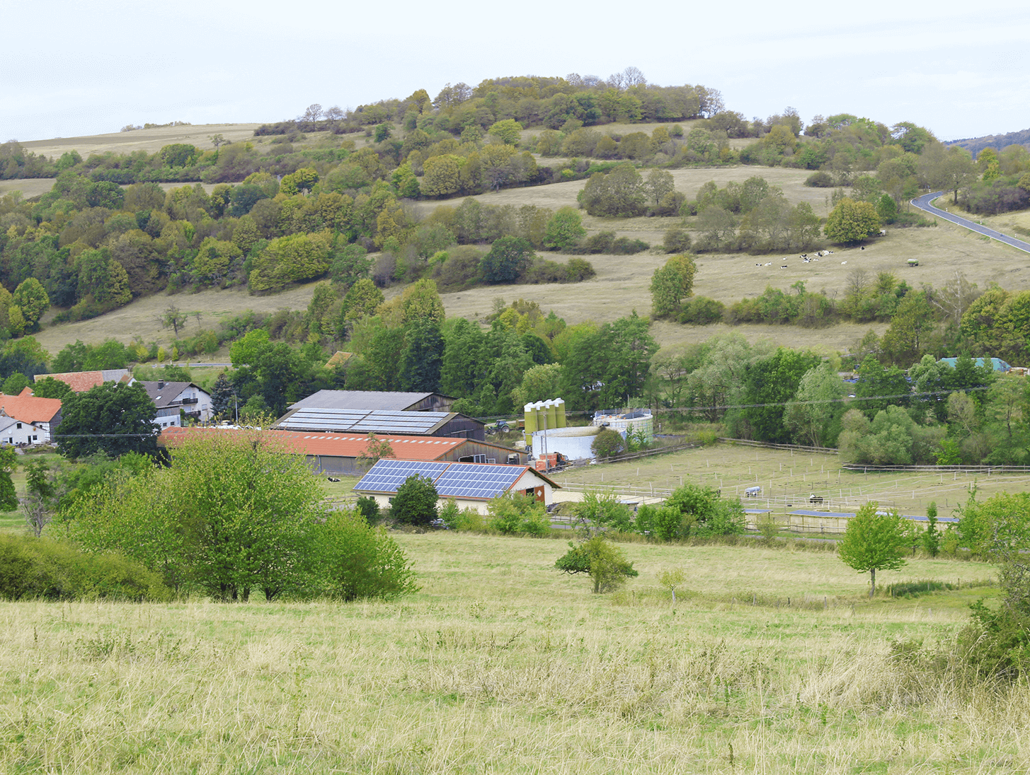 Grüne Landschaft um den Hof
