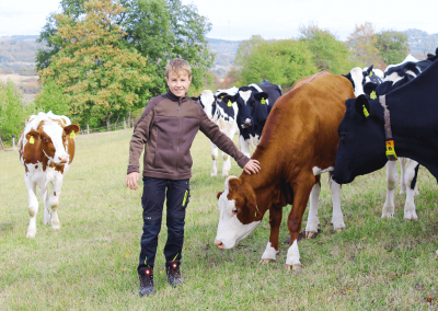 Nähe zu den Kühen